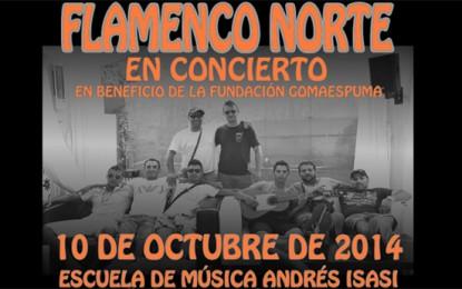 Flamenco Norte en concierto para Fundación Gomaespuma